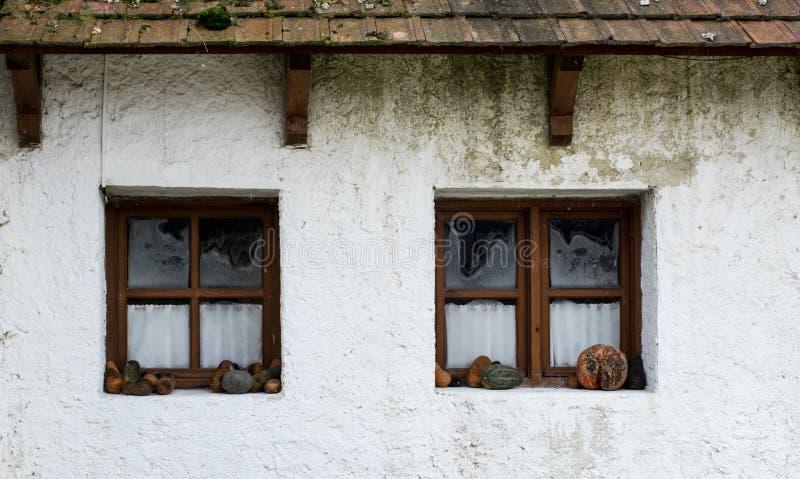 Retro utformad dekor med zucchinin nära fönstret royaltyfria bilder