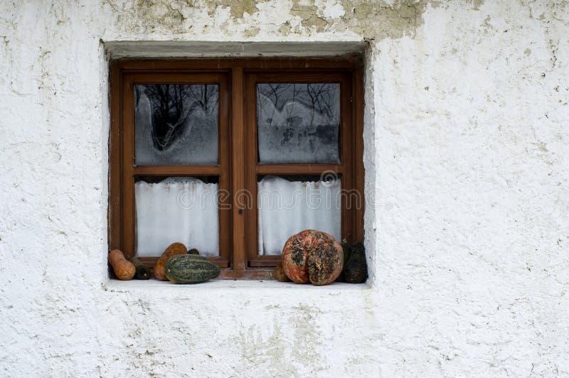 Retro utformad dekor med zucchinin nära fönstret arkivbild