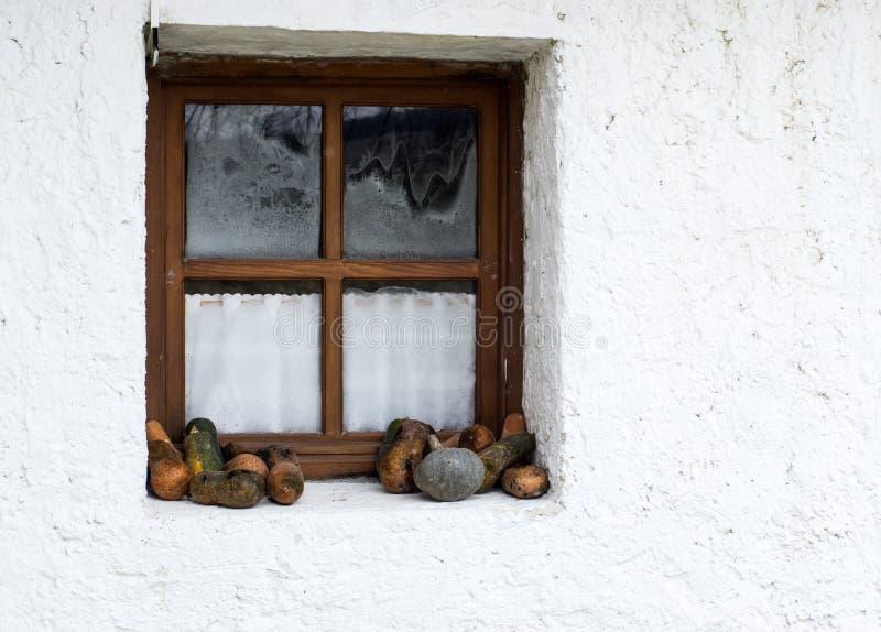 Retro utformad dekor med zucchinin nära fönstret arkivfoton