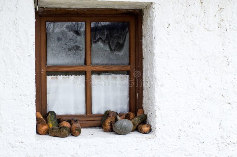Retro utformad dekor med zucchinin nära fönstret royaltyfri fotografi