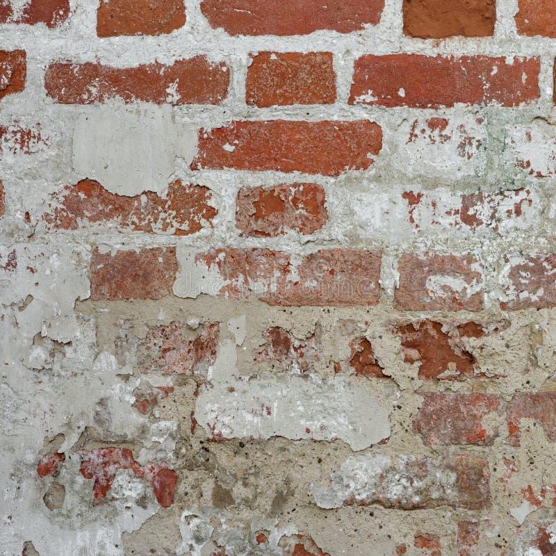 Retro vägg för röd tegelsten för tappning med den vita murbrukramen Backgroun royaltyfria bilder