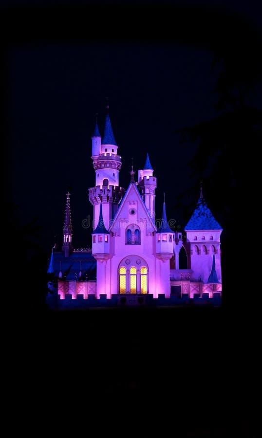 Cinderella Castle illuminated Against Black Sky royalty free stock photos