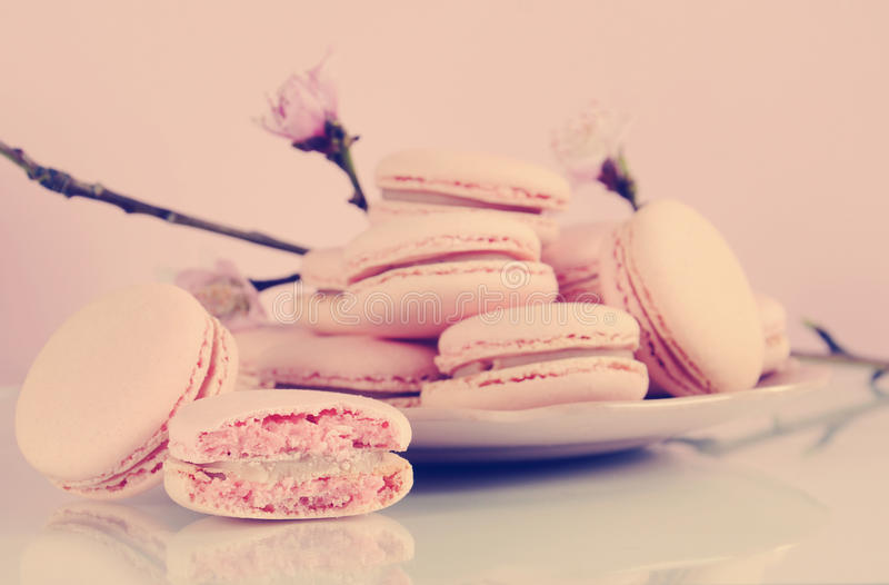 Retro vintage style pink macarons petit fours cookies with spring blossom stock image