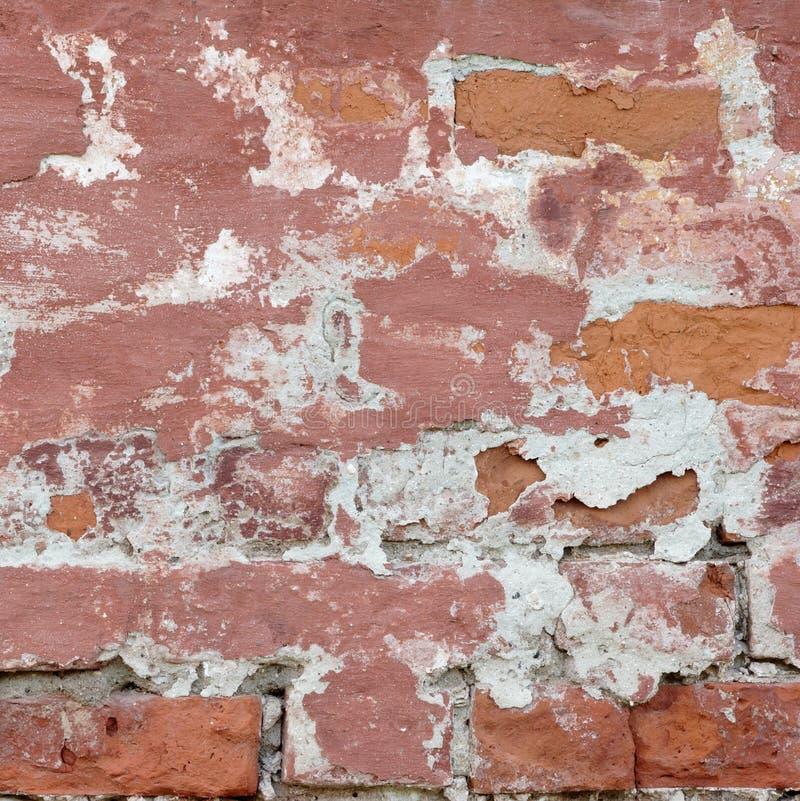 Retro- Wand des Weinlese-roten Backsteins mit weißem Gips-Rahmen Backgroun lizenzfreies stockbild