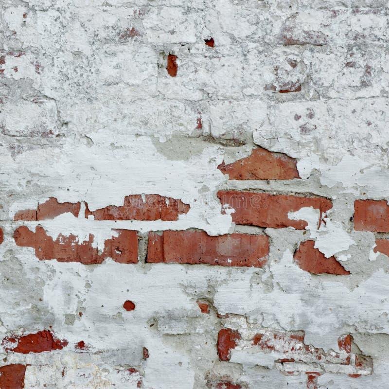 Retro- Wand des Weinlese-roten Backsteins mit weißem Gips-Rahmen Backgroun stockbilder