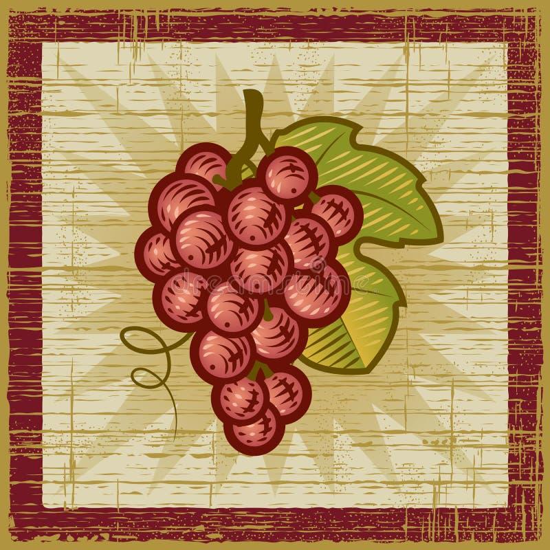 retro wiązek winogrona ilustracja wektor