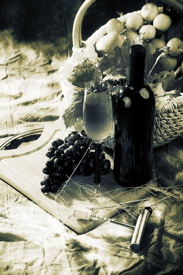 Retro wijnstok royalty-vrije stock fotografie