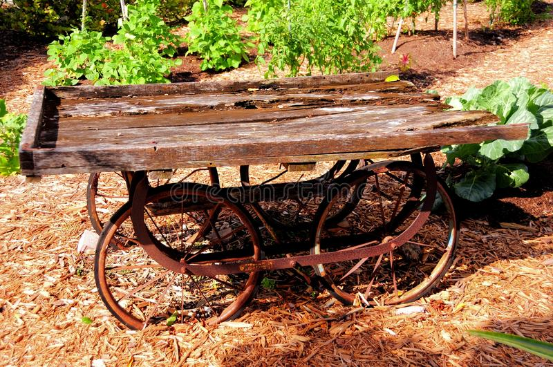 Retro wooden wagon, South Florida. Very old wooden carriage with rusted metal wheels photographed in South Florida stock photos
