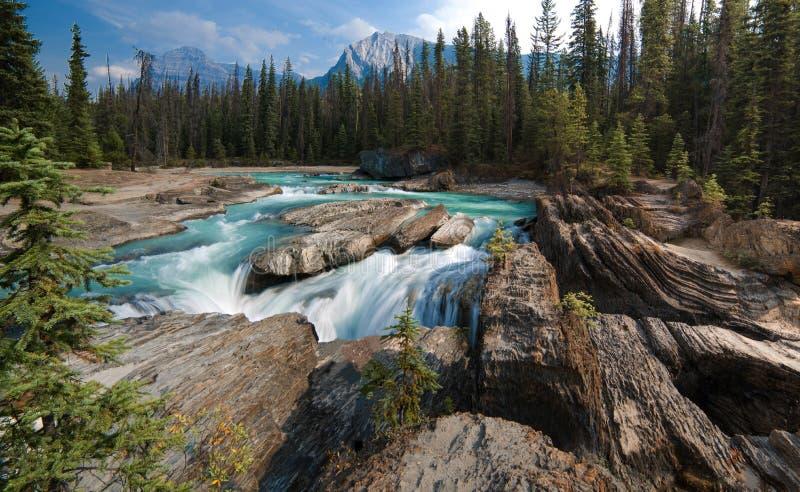 Retrocedendo o rio do cavalo, ponte natural, campo, canadense Montanhas Rochosas foto de stock royalty free