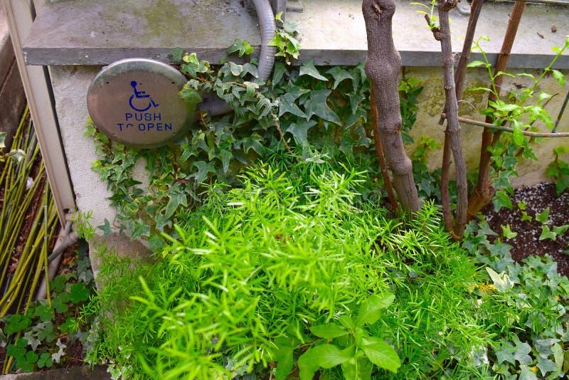 Retroscena al giardino dell'interno con il bottone di handicap immagini stock libere da diritti