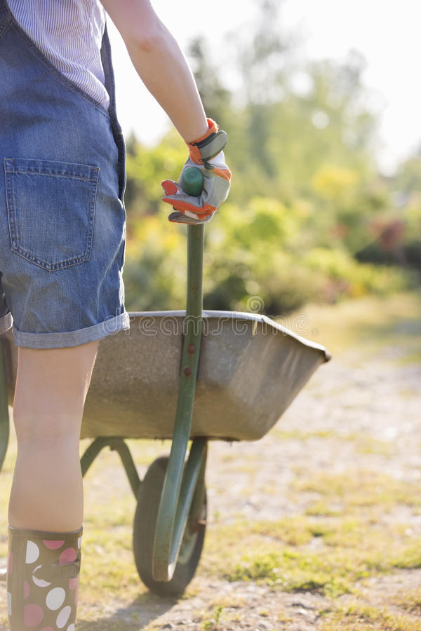 Retrovisione del Midsection del giardiniere femminile che spinge carriola alla scuola materna della pianta fotografie stock