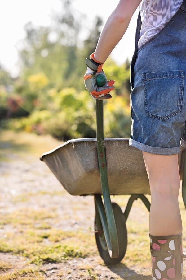 Retrovisione del Midsection del giardiniere femminile che spinge carriola alla scuola materna della pianta fotografia stock libera da diritti