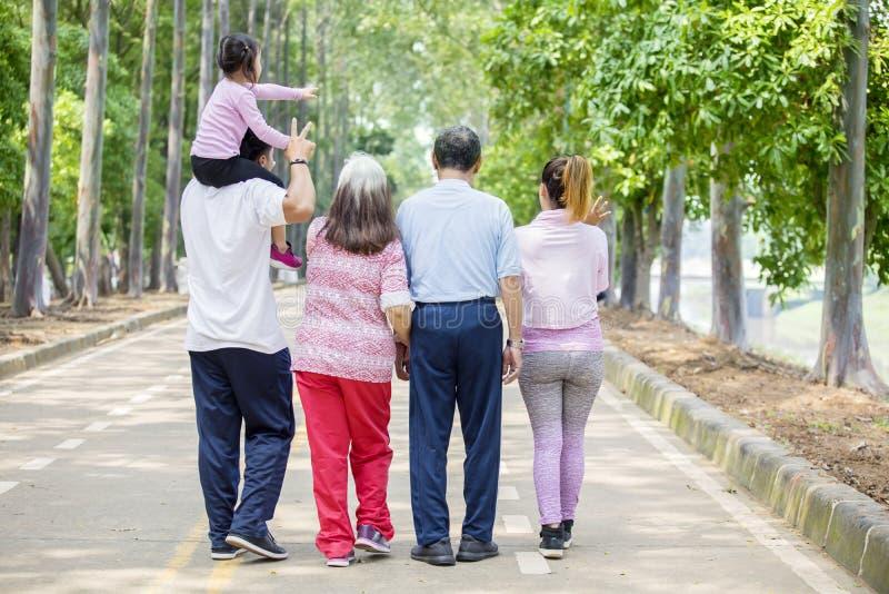 Retrovisione della famiglia allargata che cammina sulla strada fotografie stock libere da diritti