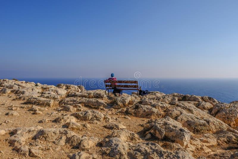 Retrovisione della giovane signora che si siede su un banco che guarda fuori al mare immagini stock