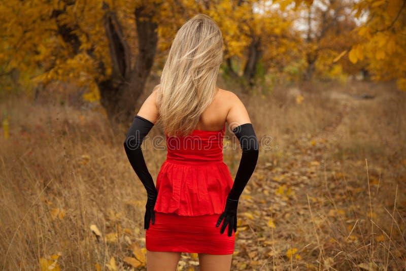 Retrovisione della ragazza graziosa in vestito rosso immagini stock