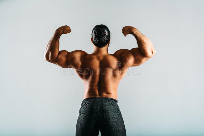 Retrovisione di un culturista maschio che mostra i muscoli fotografia stock libera da diritti