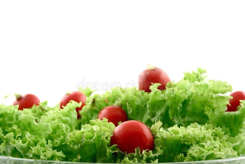 Rettich im Kopfsalat stockbilder