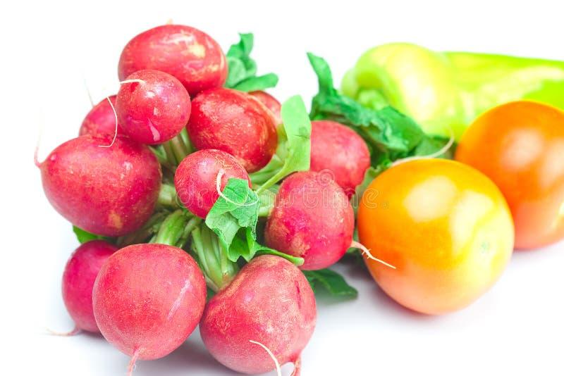 Rettich, Tomate und Pfeffer lizenzfreie stockfotos