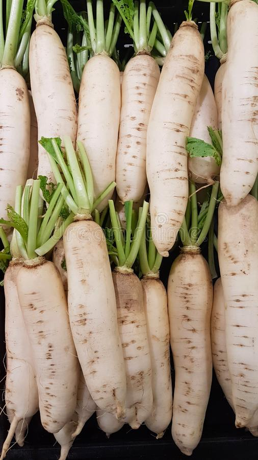 Rettiche, organisches gesundes für natürliche Hintergründe lizenzfreie stockfotos