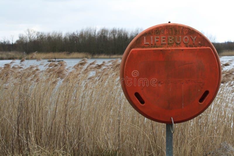Rettungsring neben offenem Wasser und Schilfen lizenzfreie stockfotografie