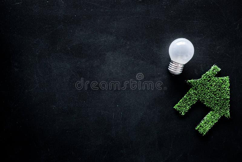 Rettungstechnologiekonzept Enegry Hausausschnitt gemacht vom grünen Gras nahe Glühlampe auf schwarzer Draufsichtkopie des Hinterg lizenzfreie stockbilder