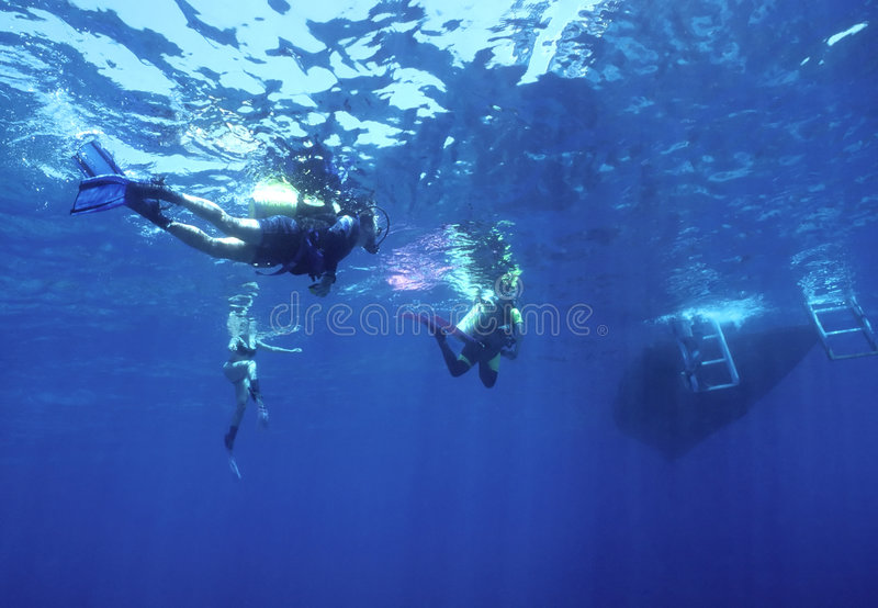 Download Returning Home stock photo. Image of ocean, divers, subaqua - 109252