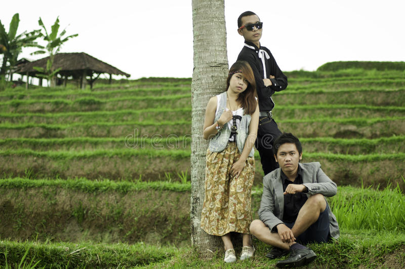 Reunião de negócios na paisagem do campo do arroz. fotos de stock
