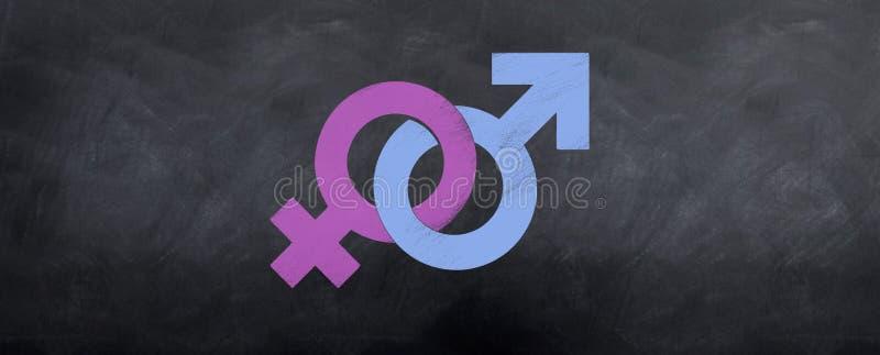 Reunião masculina e fêmea dos símbolos ilustração do vetor