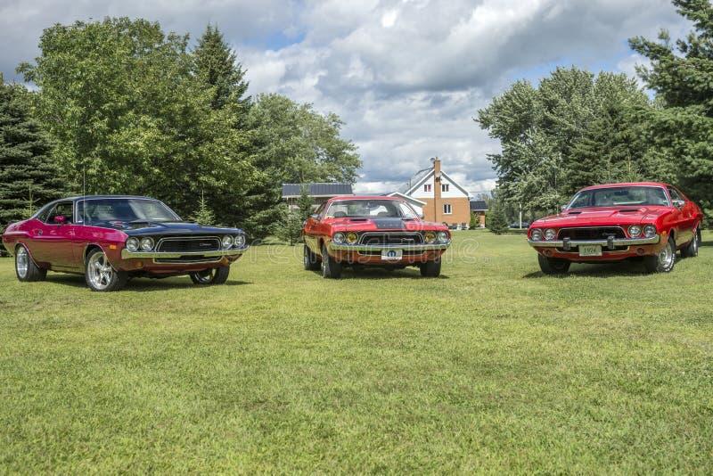 Reunión del desafiador de Dodge fotografía de archivo