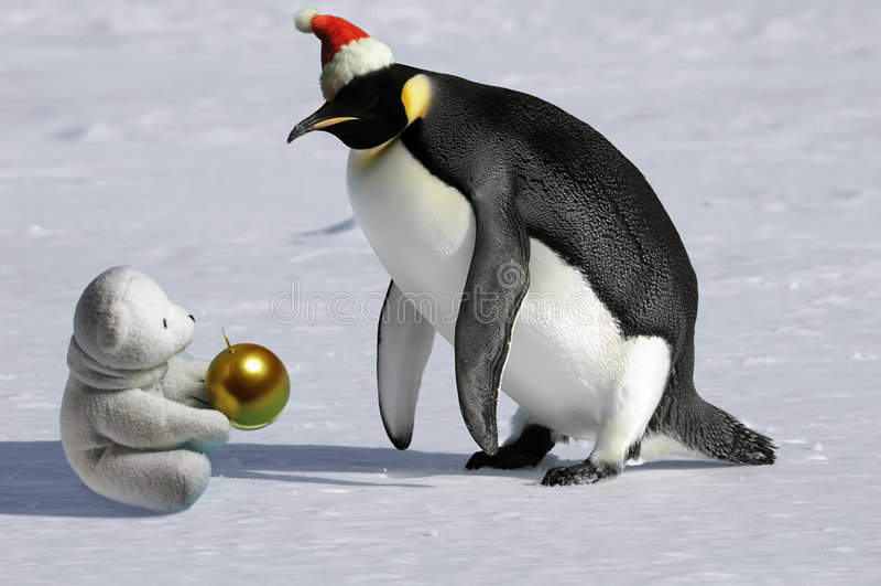 Reunión rara de la Navidad fotos de archivo libres de regalías