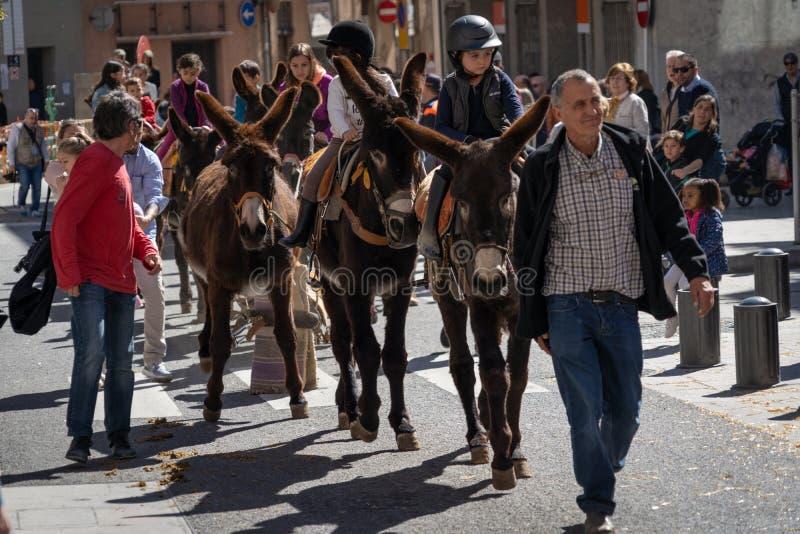 Reus, Spagna Marzo 2019: Bambini che guidano gli asini ed i muli intorno al centro urbano nella cavalcata di festival delle tombe fotografia stock libera da diritti