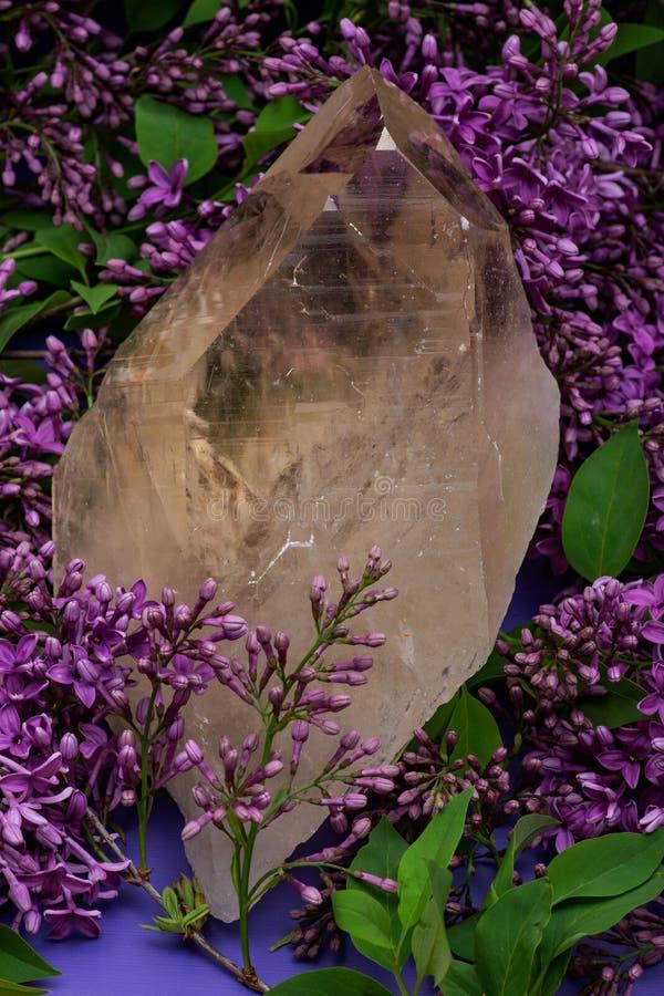 Reusachtig natuurlijk Citroengeel die Kathedraalkwarts van Brazili? door purpere lilac bloem wordt omringd royalty-vrije stock foto's