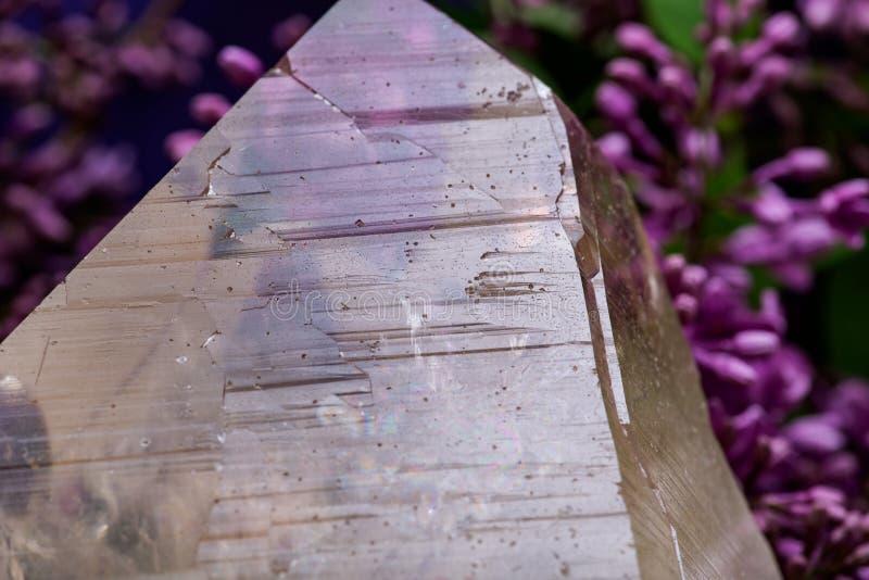 Reusachtig natuurlijk Citroengeel die Kathedraalkwarts van Brazili? door purpere lilac bloem wordt omringd royalty-vrije stock afbeelding