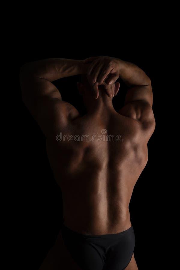 Reusachtige bodybuilderrug royalty-vrije stock foto
