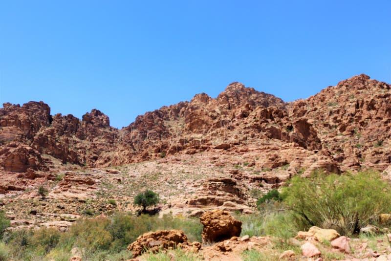 Reusachtige bruine Bergen in de woestijn stock fotografie
