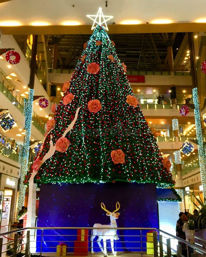 Reusachtige die Kerstboom prachtig op de Kerstavond wordt verfraaid stock fotografie