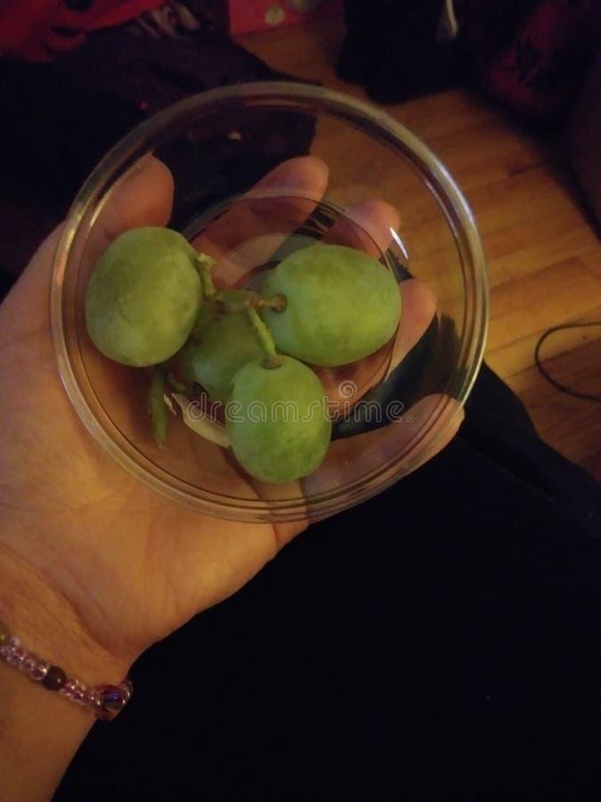 Reusachtige Druiven royalty-vrije stock foto's