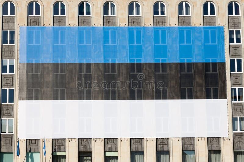 Download Reusachtige Estlandse vlag stock afbeelding. Afbeelding bestaande uit overheid - 29508119