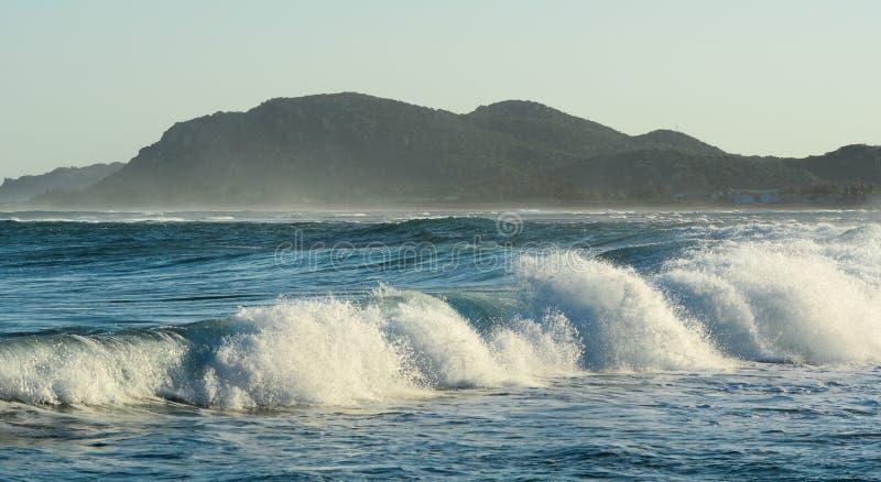 Reusachtige golf op het blauwe overzees stock foto