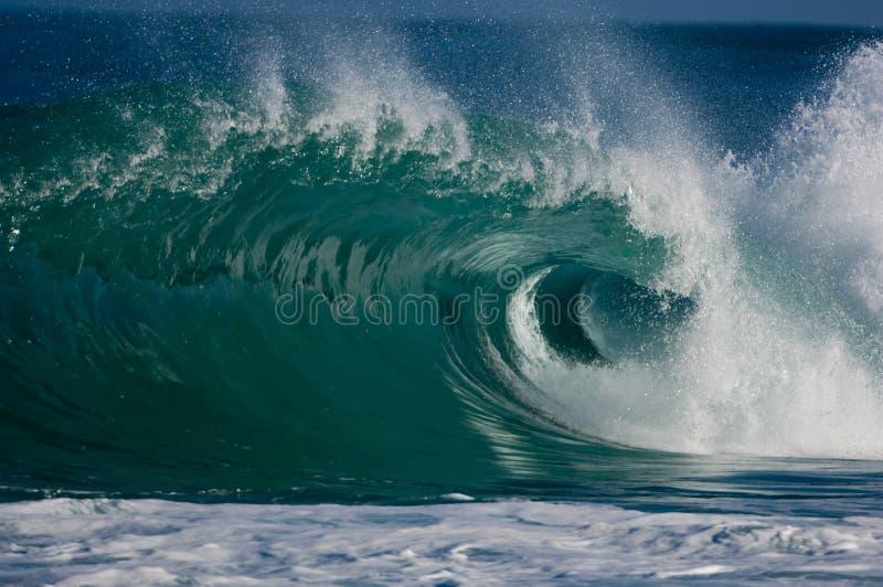 Reusachtige krullende oceaangolf royalty-vrije stock afbeeldingen