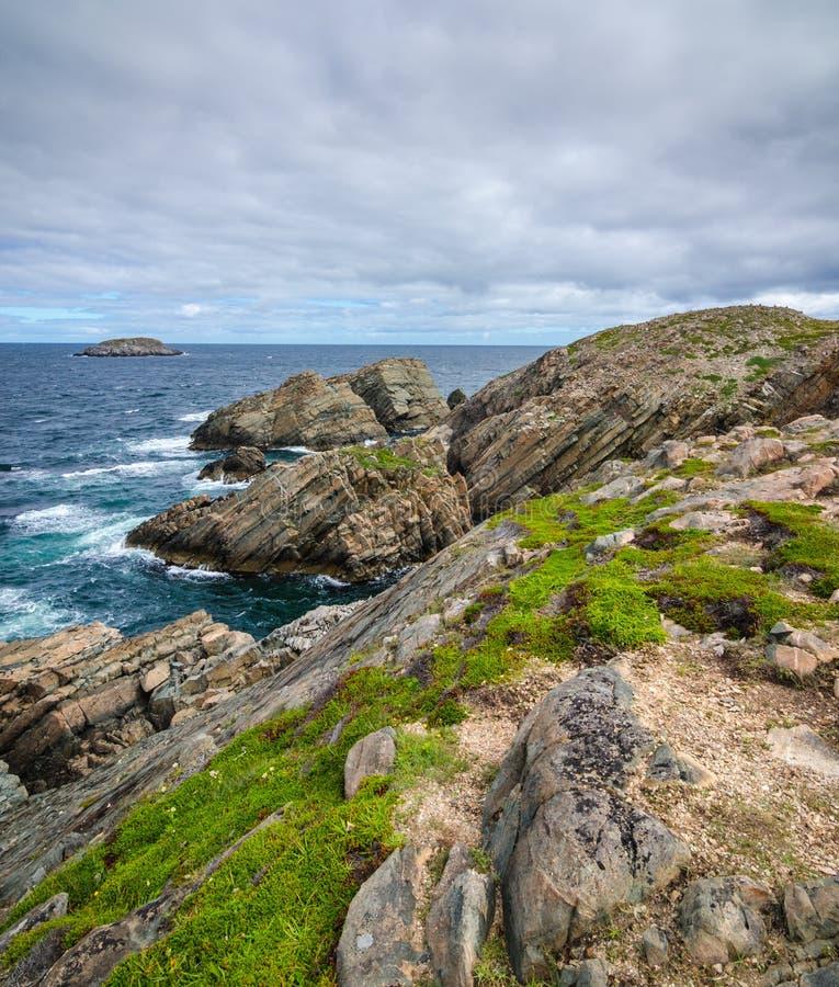 Reusachtige rotsen en keidagzomende aardlagen langs de kustlijn van Kaapbonavista in Newfoundland, Canada stock afbeelding