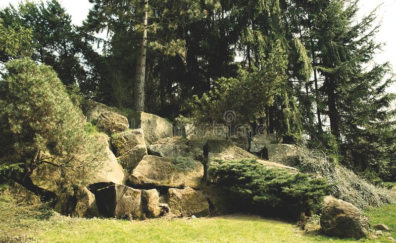 Reusachtige rotsen in het bos stock fotografie