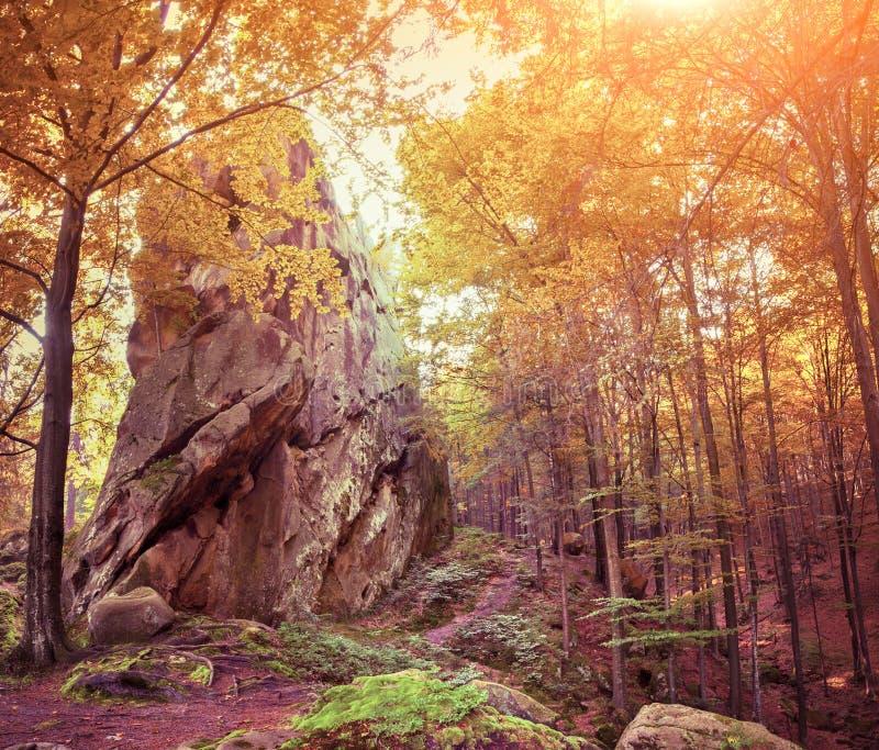 Reusachtige steen in het de herfstbos stock afbeeldingen