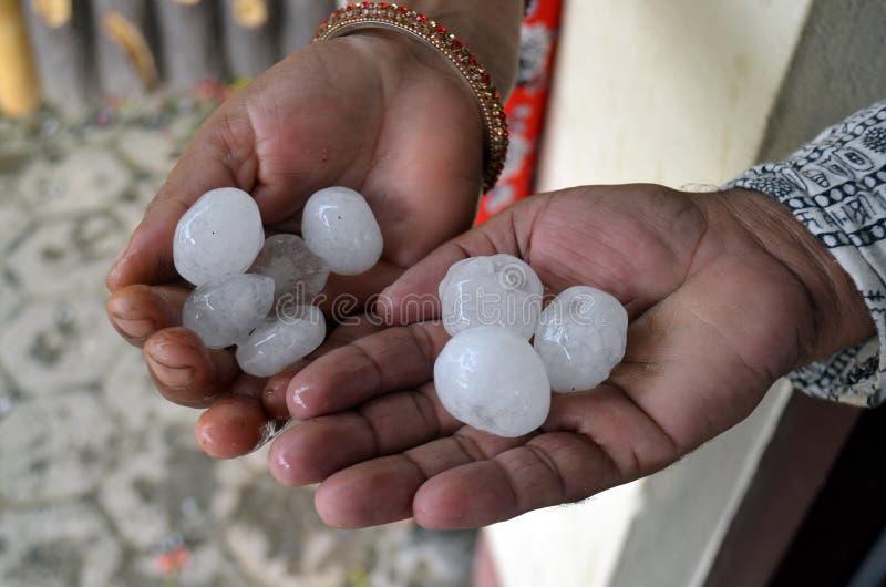Reuzehagelstenen in handen van twee mensen Chitwan nationaal park, stock afbeelding