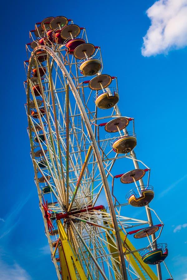 Reuzenrad in de zomer stock afbeelding
