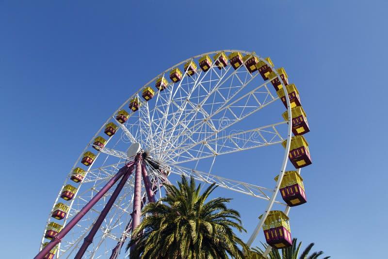 Reuzenrad op Geelongs-de promenade van de waterkant royalty-vrije stock afbeeldingen