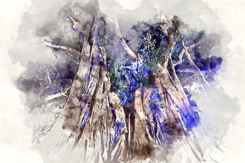 Reuzerubberbomen in het Plein Gabriel Miro in de stad van Alicante royalty-vrije illustratie