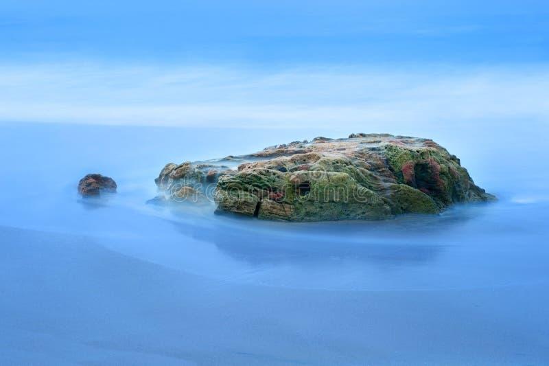 Rev och hav arkivbild