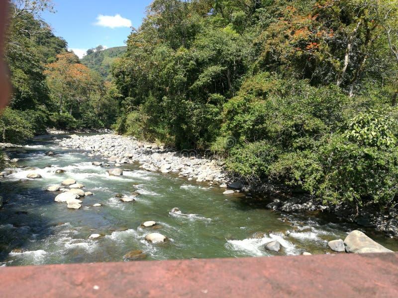 Reventazon flod arkivfoton
