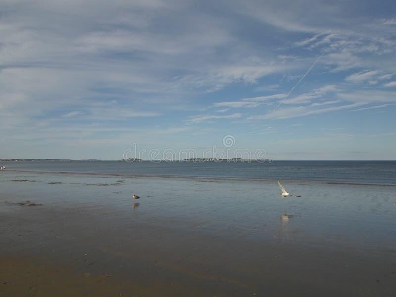 Revere пляж, Revere, Массачусетс, США стоковое изображение rf